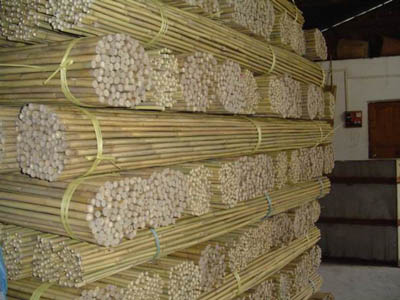 Bamboo Poles in China